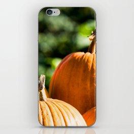 autumn vegetable iPhone Skin