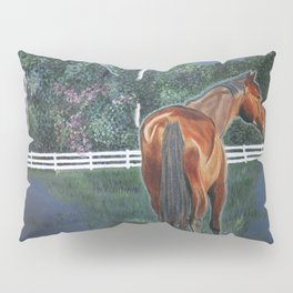 Looking On Pillow Sham