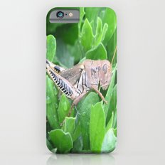 beauty in the mundane - grasshopper iPhone 6s Slim Case