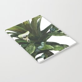 Glass Frogs Notebook