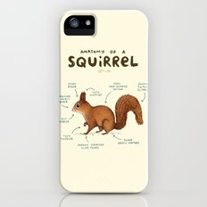 Anatomy of a Squirrel iPhone SE Slim Case