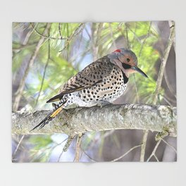 Northern Flicker Showing His Colors Throw Blanket