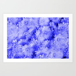 Periwinkle Floral Garden Art Print
