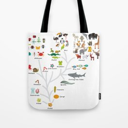 Evolution in biology, scheme evolution of animals on white. children's education back to scool Tote Bag