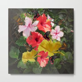 Hibiscus meeting Metal Print