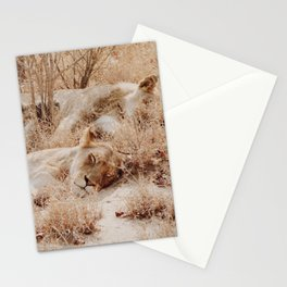 Lioness cuddle pile Stationery Cards