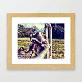 Hello Goat Framed Art Print