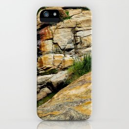 """A Walk on the Wild Side (i)"" by ICA PAVON iPhone Case"