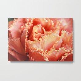 Gorgeous Macro Sensual Touch Tulip Metal Print