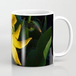 Glacier National Park, Glacier Lilies, Botanical Photography, Floral Print, Yellow Flowers Coffee Mug