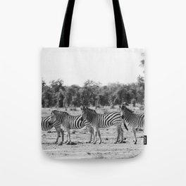 Zebra In A Row Tote Bag