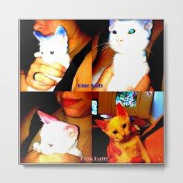 Punk Kitty/Blue Kitty Metal Print