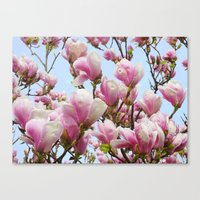 magnolia Canvas Prints featuring Magnolia. by Assiyam