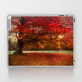Finest fall Laptop & iPad Skin