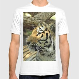 Asian Bengal Tiger Wildcat Resting Portrait Forest T-shirt