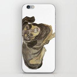 Contessa Dachshund Pastel iPhone Skin