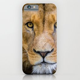 Eyes of the King of the Jungle color photograph / photography iPhone Case