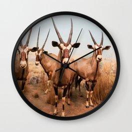 the herd at maasai mara-kenya Wall Clock