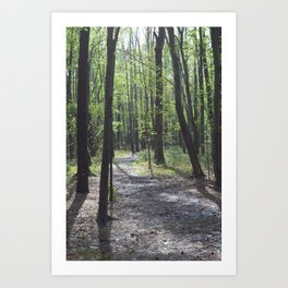 The Path Less Traveled Art Print