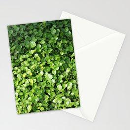 Picnic #2 Stationery Cards