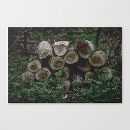 Wood pile 3 Canvas Print
