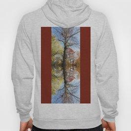 Mirrored autumn trees Hoody