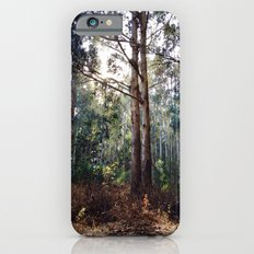 Presidio of San Francisco iPhone 6s Slim Case