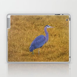 Great Blue Heron in the Grass Laptop & iPad Skin