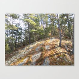 Tower Mountain Sunny Hike Canvas Print