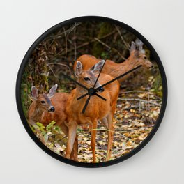 A Trio of Blacktail Deer in the Forest Wall Clock