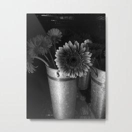 Gerbera Daisy Metal Print