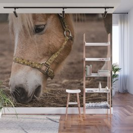 horse by Lesly Juarez Wall Mural