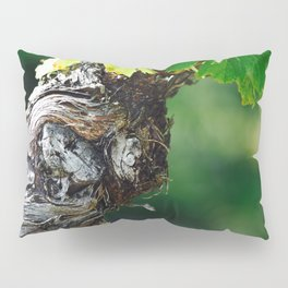 Winding Treasure Pillow Sham