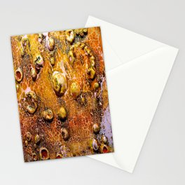 Bubble Effect Stationery Cards