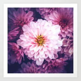 LaPinko Flower Art Print