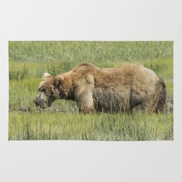 Brown Bear Grazing Rug