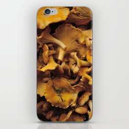 Chantarelle mushrooms. iPhone Skin