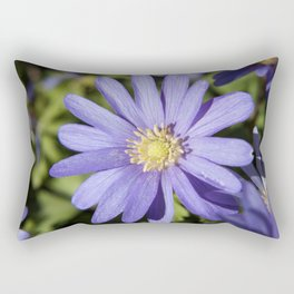 European Daisy Photography Print Rectangular Pillow