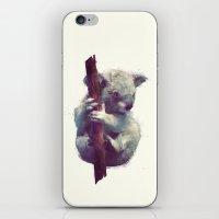 koala iPhone & iPod Skins featuring Koala by Amy Hamilton