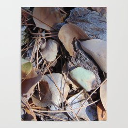 Leaf Litter Texture Study Poster