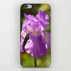 Iris 3109 iPhone & iPod Skin