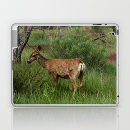 Breakfast At Mesa Verde Laptop & iPad Skin