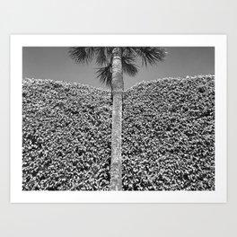 landscape architecture no.2 Art Print