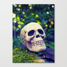Outdoor skull Canvas Print