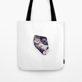 Two kitten brothers hugging Tote Bag