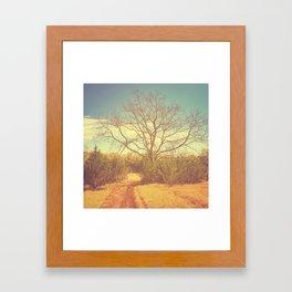 Golden Path Framed Art Print