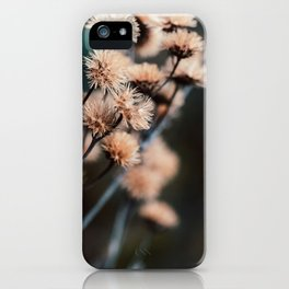 Seeds Of Change #1 iPhone Case