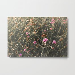 Pink Flowers from Our Secret Garden Metal Print