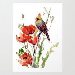 Cardinal Bird And Poppy Flowers Art Print