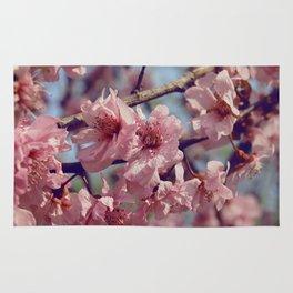 Sakura... One Spring in Beijing Rug